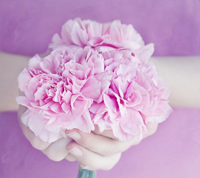 flowers-1316027_1280-640x570
